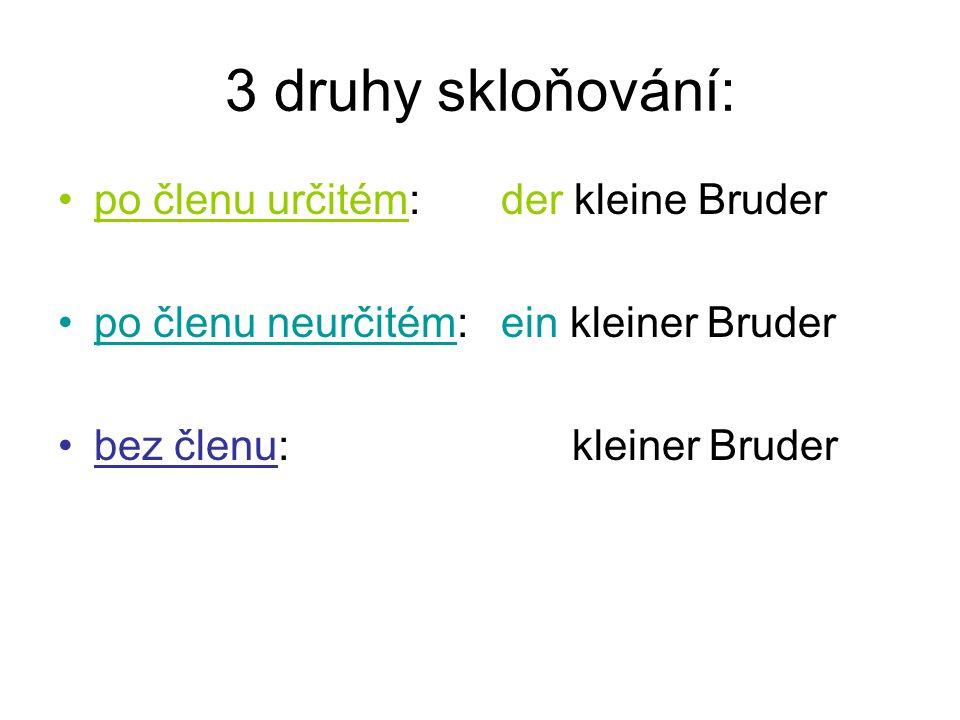 po členu určitém rod mužský 1.der kleine Bruder 2.
