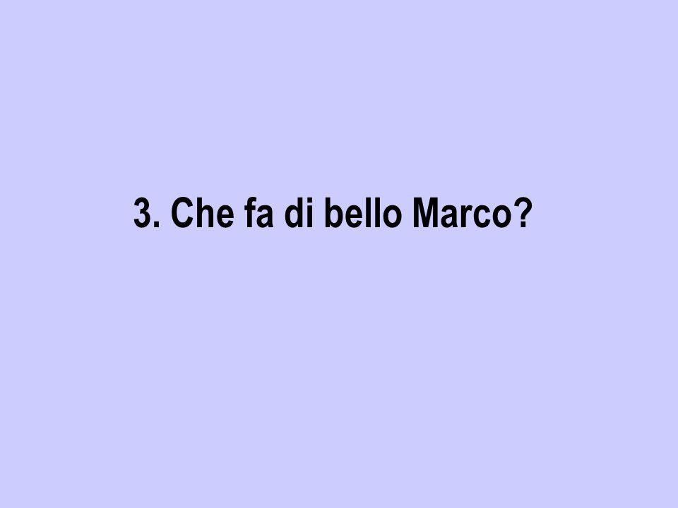 3. Che fa di bello Marco?