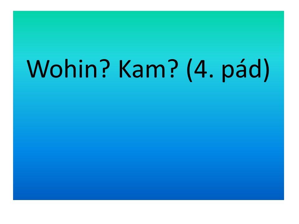 Slovesa, která odpovídají na otázku Wohin.Kam. (4.pád) hängen pověsit Wohin.