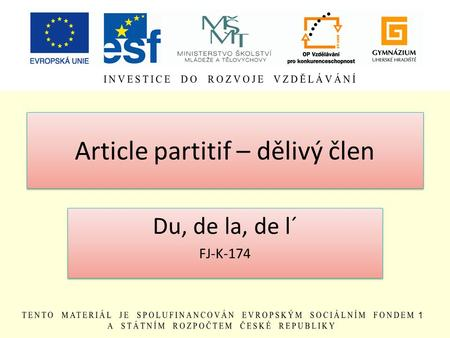 Article partitif – dělivý člen