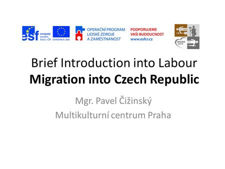 Brief Introduction into Labour Migration into Czech Republic Mgr. Pavel Čižinský Multikulturní centrum Praha.