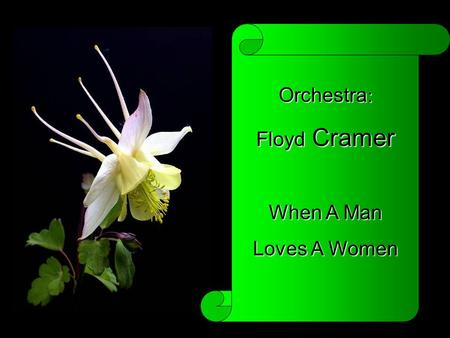 Orchestra : Floyd Floyd Cramer When A Man Loves A Women.