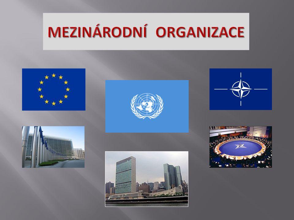 integracekooperace globalizace korporace politické organizace vojenské organizace ekonomické organizace nevládní organizace MEZINÁRODNÍ ORGANIZACE