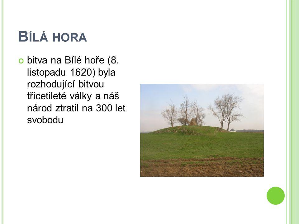ZÁPIS DO SEŠITU Památná místa hora Říp Blaník Velehrad Vyšehrad Pražský hrad socha sv.