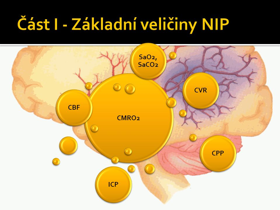 Co potřebuje neuron.