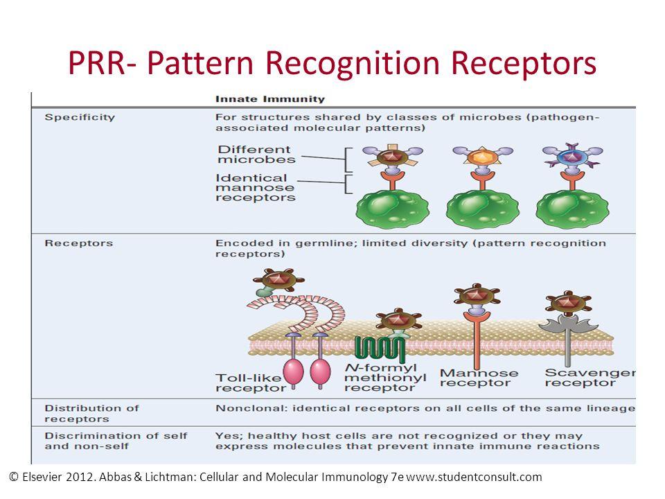 Cell associated PRR © Elsevier 2012.