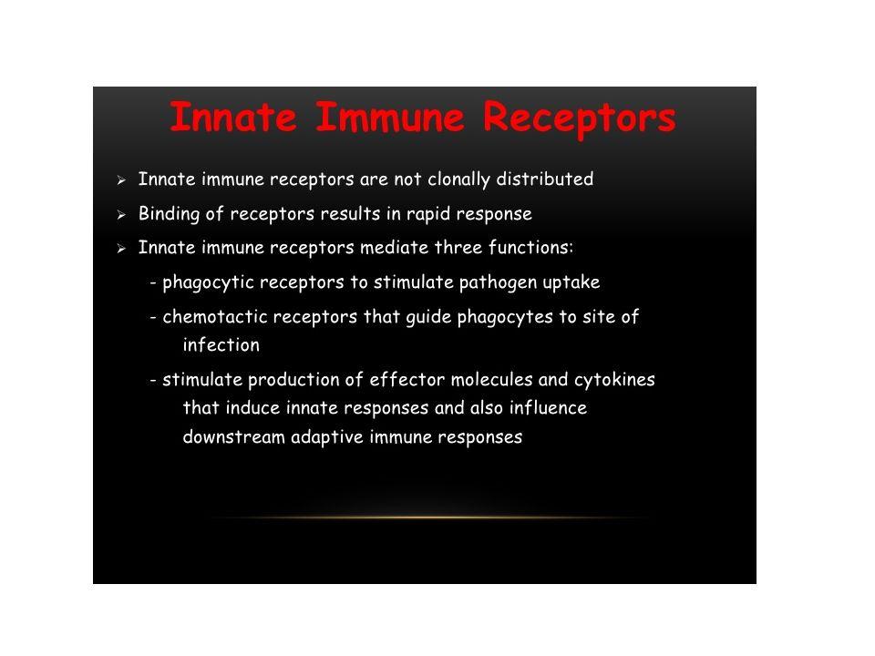 """Vrozená imunita: charakteristické rysy Autoreaktivita: Vrozená imunita se vytvořila k poznávání """"cizího , mikroorganismů, nikoliv vlastních molekul."""