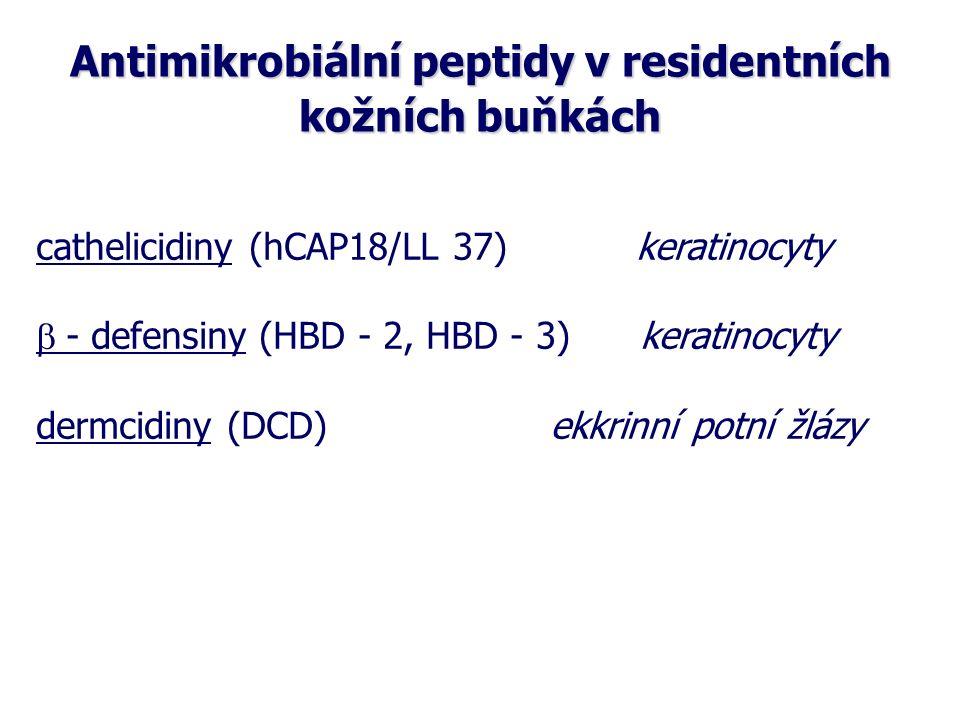 Molekuly buněčných interakcí Cytokiny Interleukiny (IL-1 – IL-35), IFN, TNF, TGF, CSF Chemokiny (C, CC, CXC,CX3C) Adhezivní molekuly: integriny, selektiny, adresiny