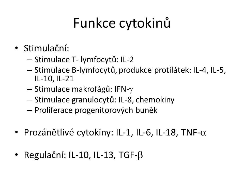 Interferony Typ I: IFN , IFN  jsou produkovány některými buňkami infikovanými viry (hlavně fibroblasty, makrofágy).