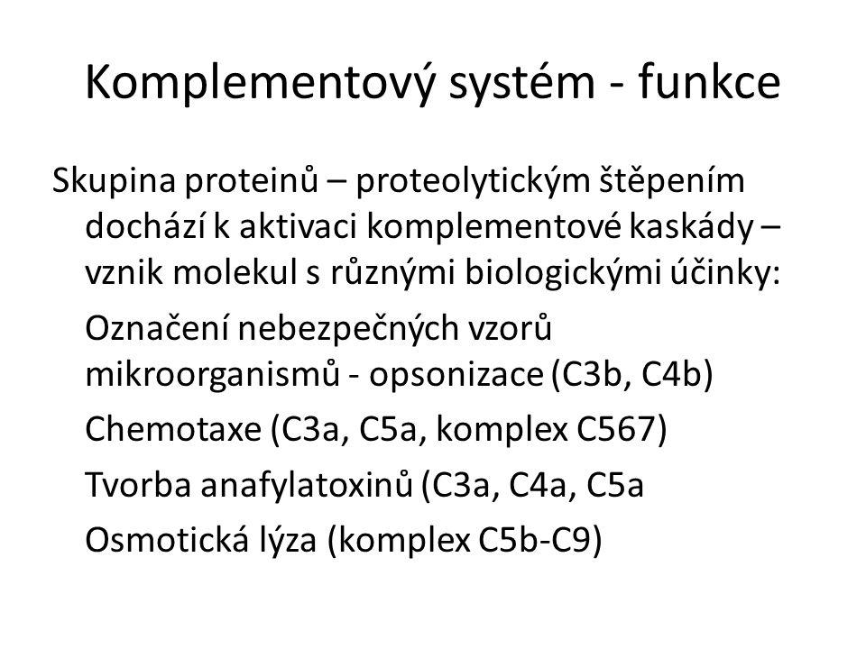 Soustava asi 30 sérových a membránových proteinů Hlavní složky 9 sérových proteinů C1-C9 Kaskádovitá aktivace C3 ústřední složka, C3b vazba na mikrobiální povrch Terminální produkt komplementové kaskády C5b, C6, C7, C8 a C9 (MAC membrane attack complex) Komplementový systému