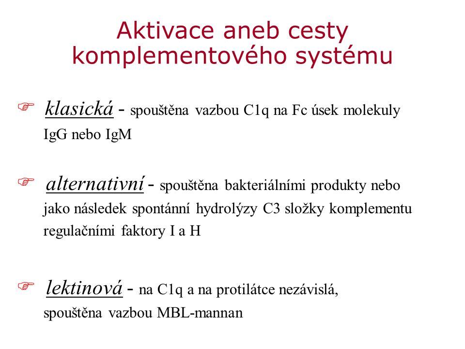 Aktivace komplementového systému © Elsevier 2012.