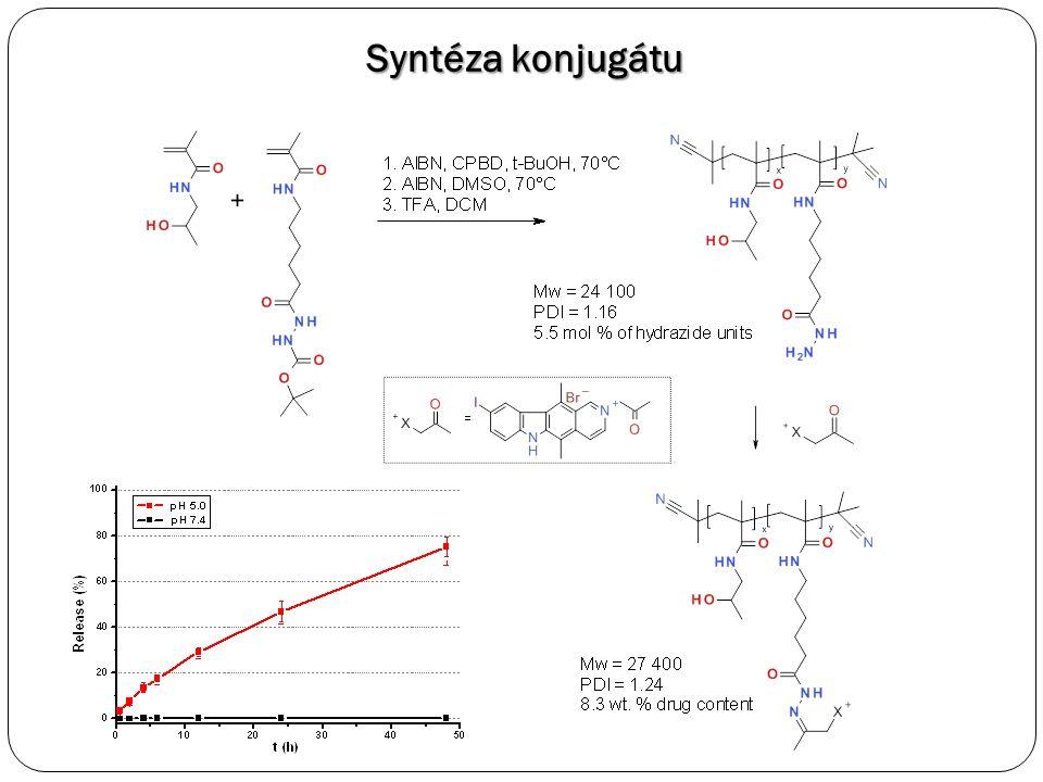 Optimalizovaný derivát 9-jodoellipticinia Po 2.5 hPo 24 h Intracelulární lokalizace, spojeno s barvením Hoechst (kolokalizace v jádře)