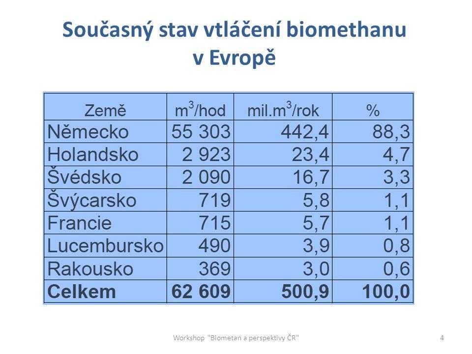 Struktura zdrojů biometanu v Německu Počet : 74 Workshop Biometan a perspektivy ČR 5