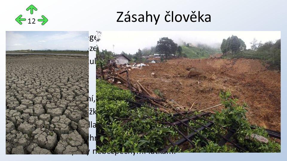 aplikace ekologického zemědělství zachování původních porostů a zabránění tak vodní a větrné erozi zvyšování půdního fondu rekultivací vyškolení odborníků na obdělávání půdy do rozvojových zemí Možnosti řešení 13