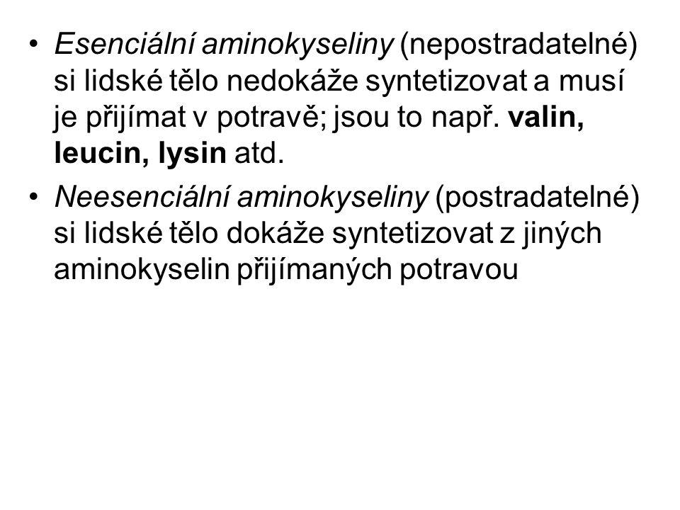 Peptidy Vznikají spojením dvou nebo více molekul aminokyselin (karboxylová skupina jedné aminokyseliny reaguje s aminoskupinou druhé aminokyseliny a uvolňuje se molekula vody) Vazba, která vzniká, se nazývá peptidická vazba Oligopeptidy obsahují 2–10 aminokyselinových zbytků Polypeptidy obsahují 11–100 aminokyselinových zbytků