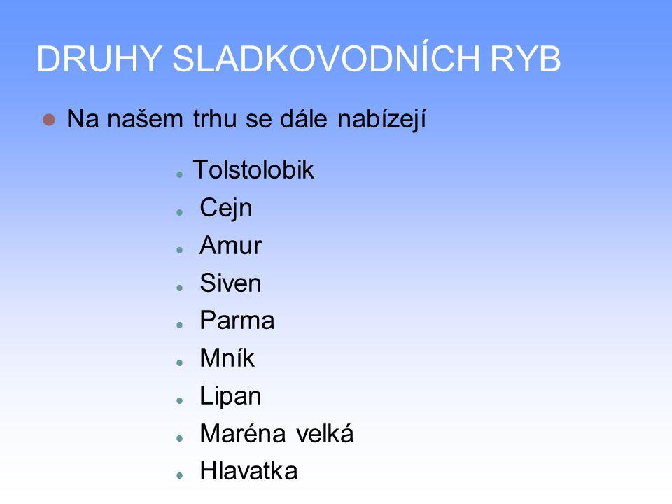 PRACOVNÍ LIST Jaké znáte ryby žijící v ČR.Jak ryby dělíme.