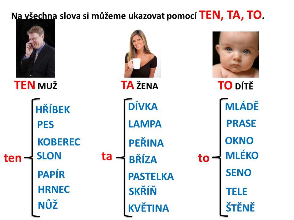 Klikej na ta slova, kde si můžeš ukázat TEN.