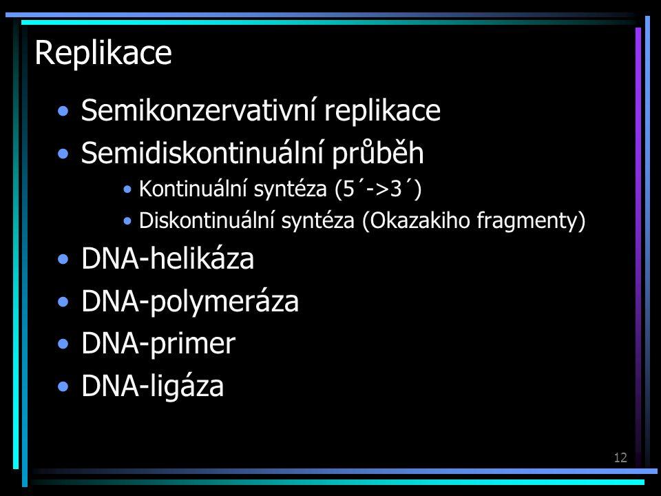 13 Transkripce Probíhá podobně jako replikace Přepis DNA do RNA RNA-polymeráza RNA-primer Posttranskripční úpravy Sestřih (exony a introny)