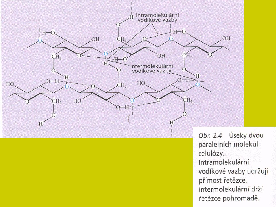 Složité cukry - kondenzace minimálně 2 a více molekul prostřednictvím reaktivního hydroxylu Složené cukry – s necukernou složkou Pohotovostní zdroj energie, málo stavební látky.