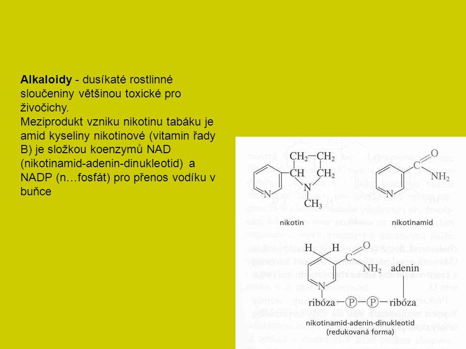 Primární struktura proteinů - posloupnost aminokyselin (kódovaných Ak, tj.