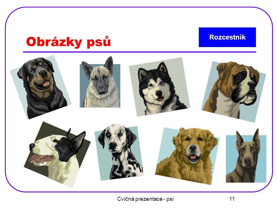 Cvičná prezentace - psi 12 Poznej plemena psů a spoj Dalmatin Rotvajler Dobrman Německý ovčák
