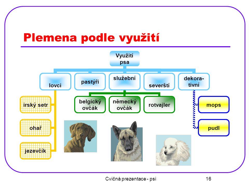 Cvičná prezentace - psi 17 Náklady u některých plemen PlemenoCena štěněte od Měsíční náklady na výživu Irský vlkodav 12 000 1 400 až 1 800 Boxer 7 000 950 až 1 400 Baset 8 000 500 až 950 Mops 4 000 100 až 500