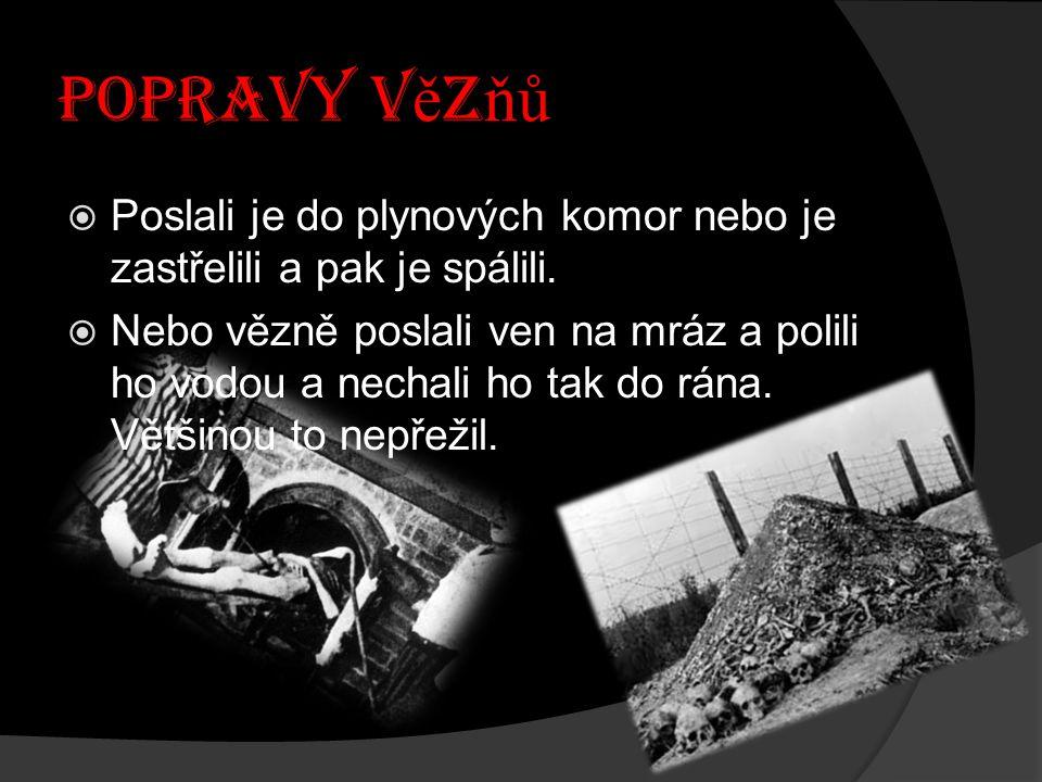 TZV.: Č ERNÁ ZE Ď  Zde Němci stříleli vězně, kdy se jim zachtělo.