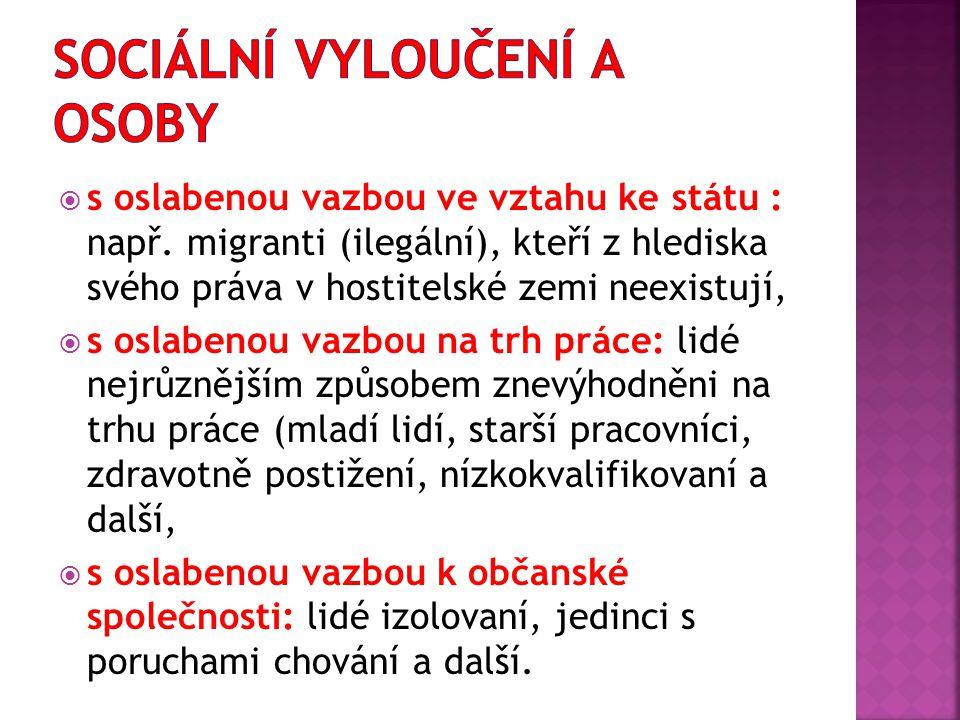  Mezi ohrožené skupiny obyvatelstva sociálním vyloučením v ČR se řadí:  Romské etnikum  Osoby se zdravotním postižením  Migranti  Izolovaní jedinci