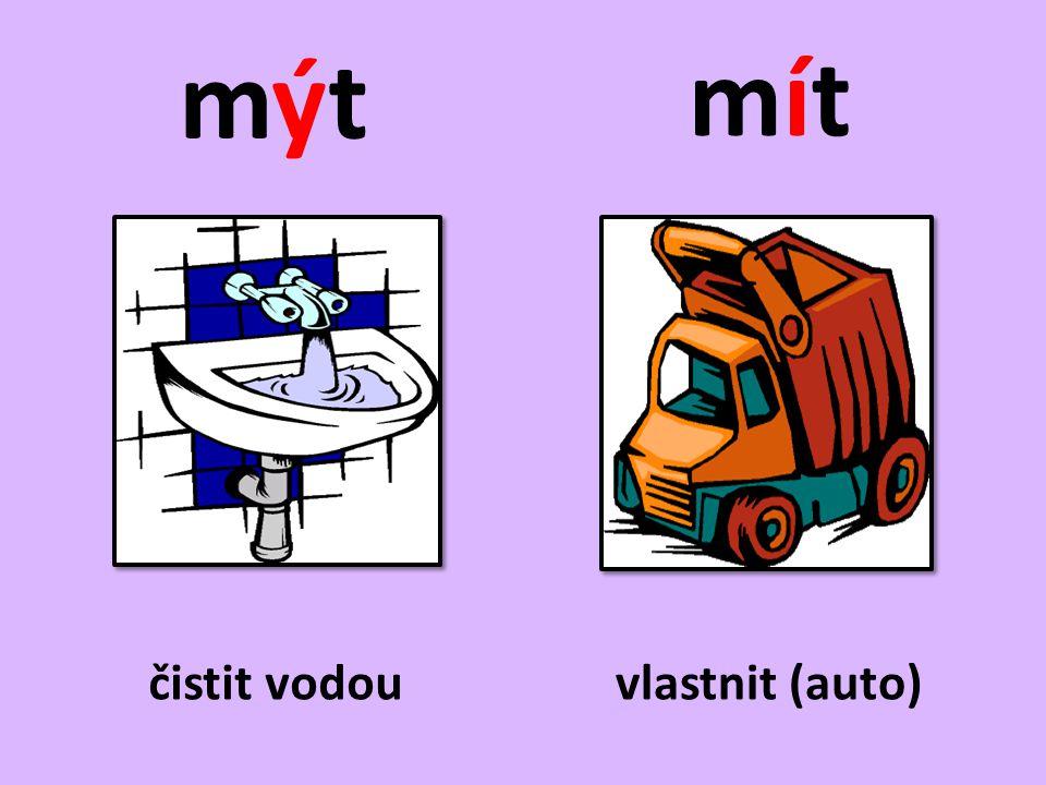 Doplňte y, ý/i, í a věty napište do sešitu.• Každý týden si musí m_t vlasy.