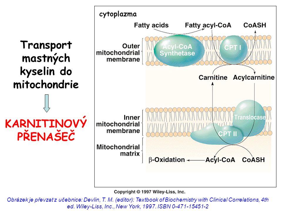 Karnitin-acyltransferáza reguluje  -oxidaci regulační enzymaktivaceinhibice karnitin palmitoyltransferáza I (karnitin-acyltransferáza)  malonyl-CoA (= meziprodukt syntézy MK )