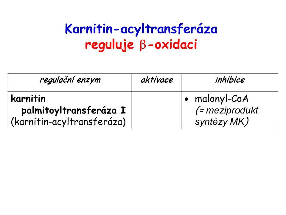 Obrázek převzat z http://www.biocarta.com/pathfiles/omegaoxidationPathway.asp (leden 2007)http://www.biocarta.com/pathfiles/omegaoxidationPathway.asp Omega-oxidace mastných kyselin (endoplazmatické retikulum, dlouhé MK – minoritní dráha)