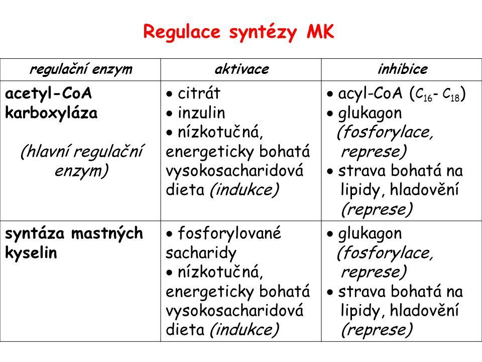 Metabolická dráha syntetizující MK a)produkuje NADPH+H + b)začíná karboxylací acetyl-CoA: produktem je malonyl-CoA c)je lokalizována v mitochondrii d)zahrnuje redukční reakce