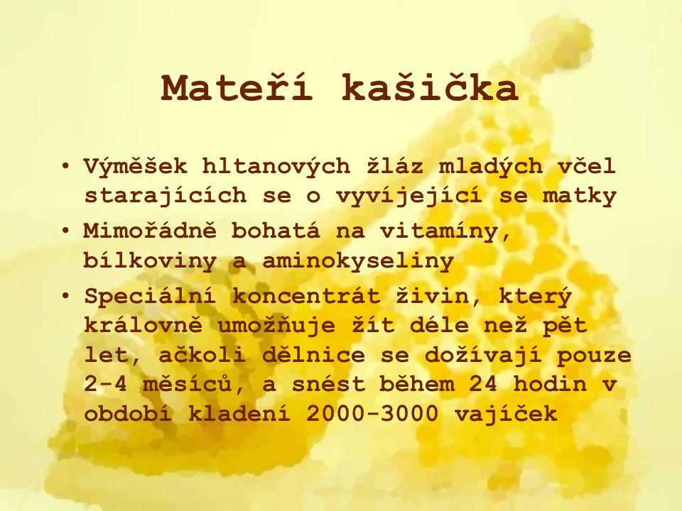 Mateří kašička Obsahuje celý komplex vitamínů B, hlavně B5 (kys.