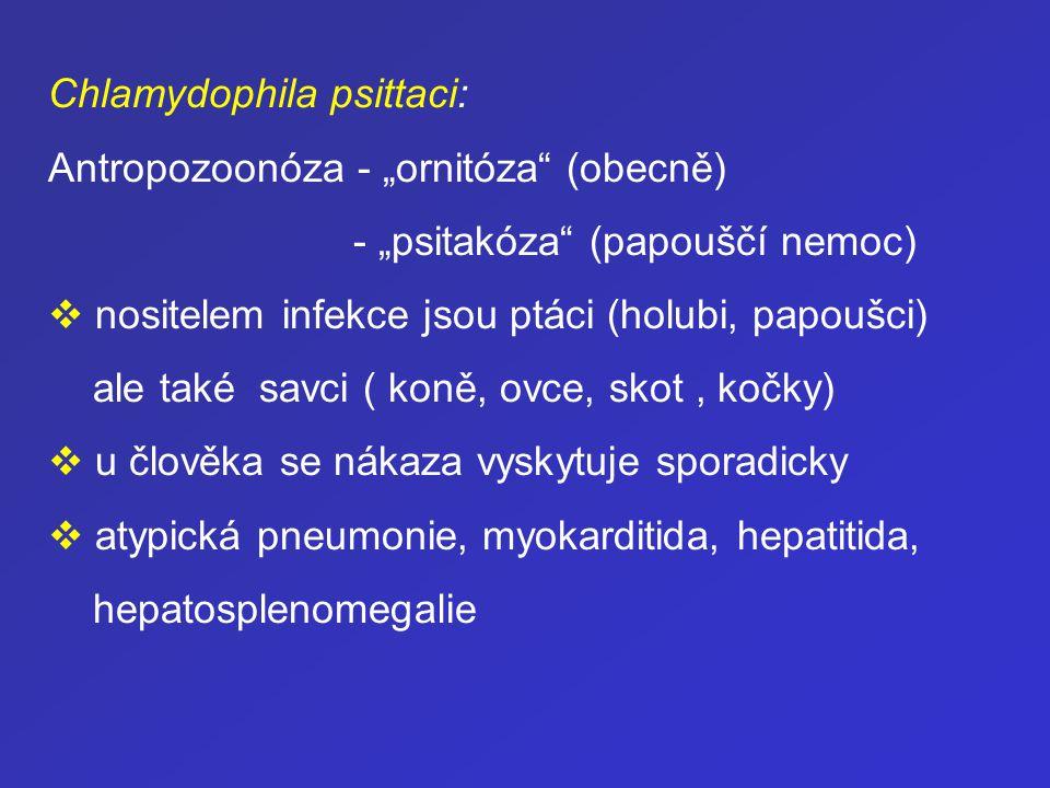 Základní zásady terapie chlamydiových nákaz: Chlamydie – nejvyšší citlivost k makrolidům a tetracyklinům.