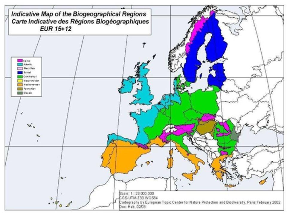 """""""Biogeografický proces (EU15 – EC, ETC, MS, NGOs) Makaronéská (2001) Alpinská (2003) Atlantická (2004) Kontinentální (2004?) Boreální (2005?) Středomořská (2005?)"""