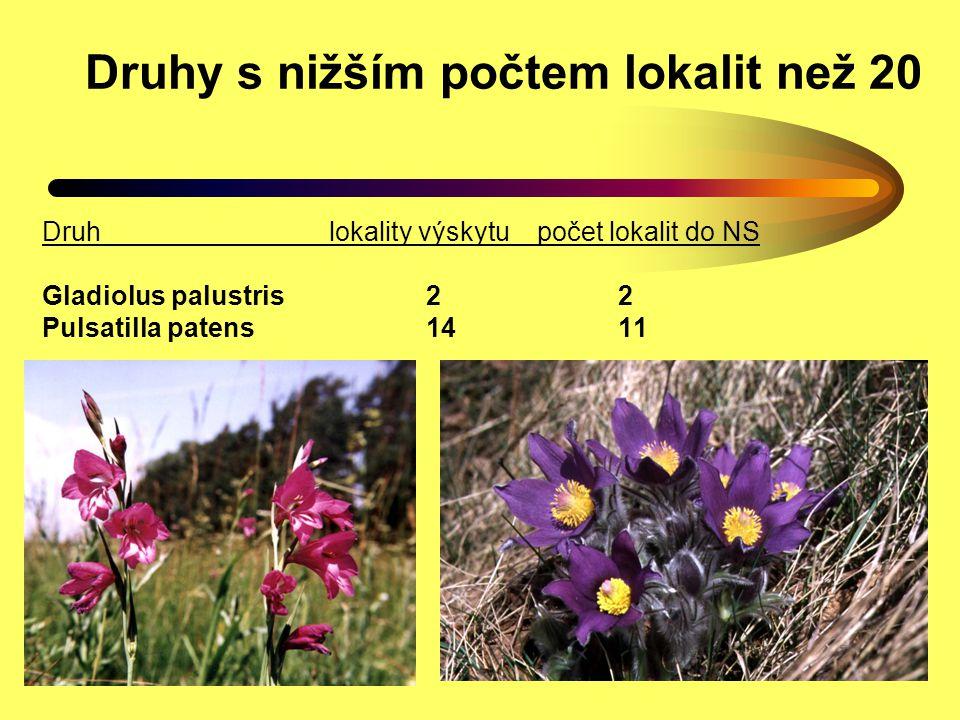 Druhy s vyšším počtem lokalit než 20 Coleanthus subtilis (puchýřka útlá) druhpočet lokalit počet lokalit do NS Coleanthus subtilis7121 Trichomanes speciosum ca 200 ca 170