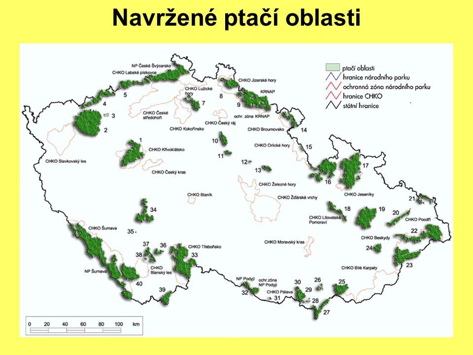 """Podíl na ochraně evropské biologické rozmanitosti (ne obecně přijímáno) Plnění povinností ze směrnic (očekáváme výtky EK) Doplnění sítě ZCHÚ (postupně) Lepší vymahatelnost práva (nejistá) Kompletní zmapování """"přírody (ano, ale až ke konci roku 2005) Šance pro lepší vztah ochrany přírody a vlastníků a uživatelů (zatím ne zcela využitá) Přínosy a pochyby"""