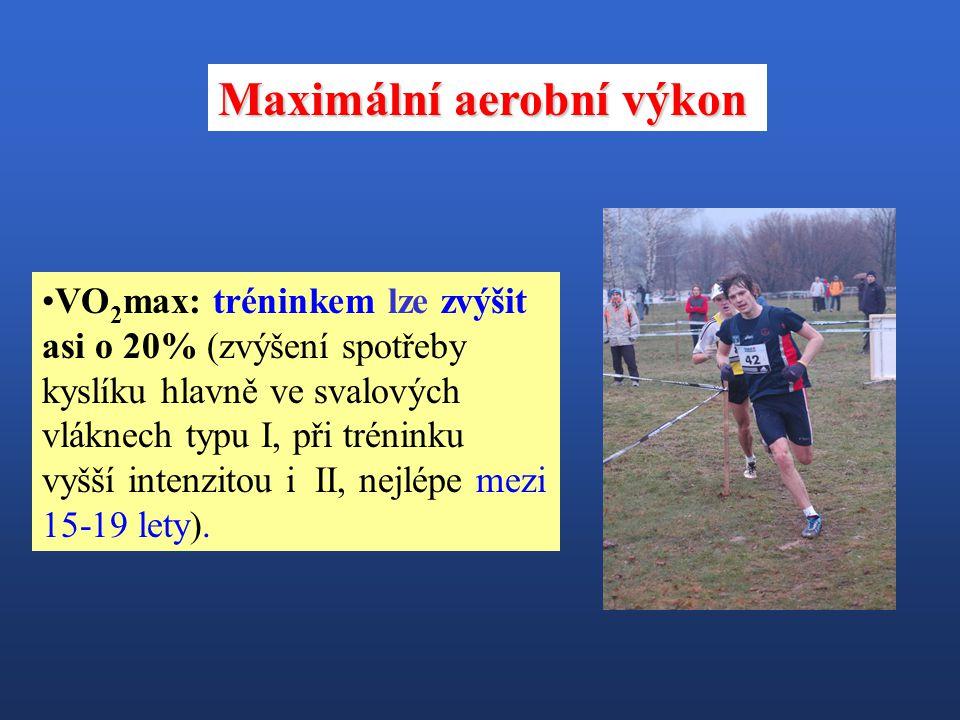 Úroveň DV je ovlivněna především dvěma funkčními charakteristikami: A)Maximální aerobní výkon (VO 2 max) - nejvyšší možná spotřeba kyslíku v tkáních (v ml/min/kg) při práci velkých svalových skupin.