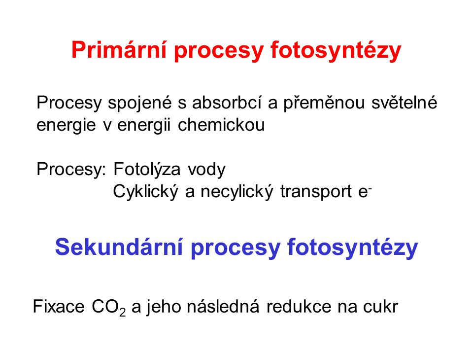 Vstupy a výstupy látek a energie v primárních procesech oxygenní fotosyntézy oxygenní fotosyntézy