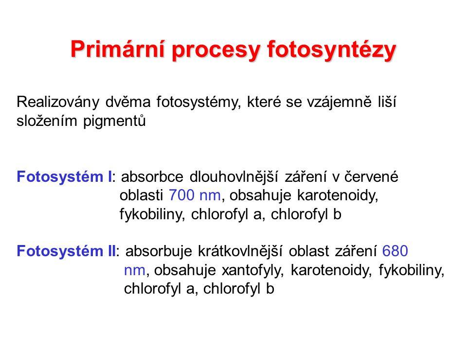 Schéma přenosu elektronů v thylakoidní membráně Z schéma