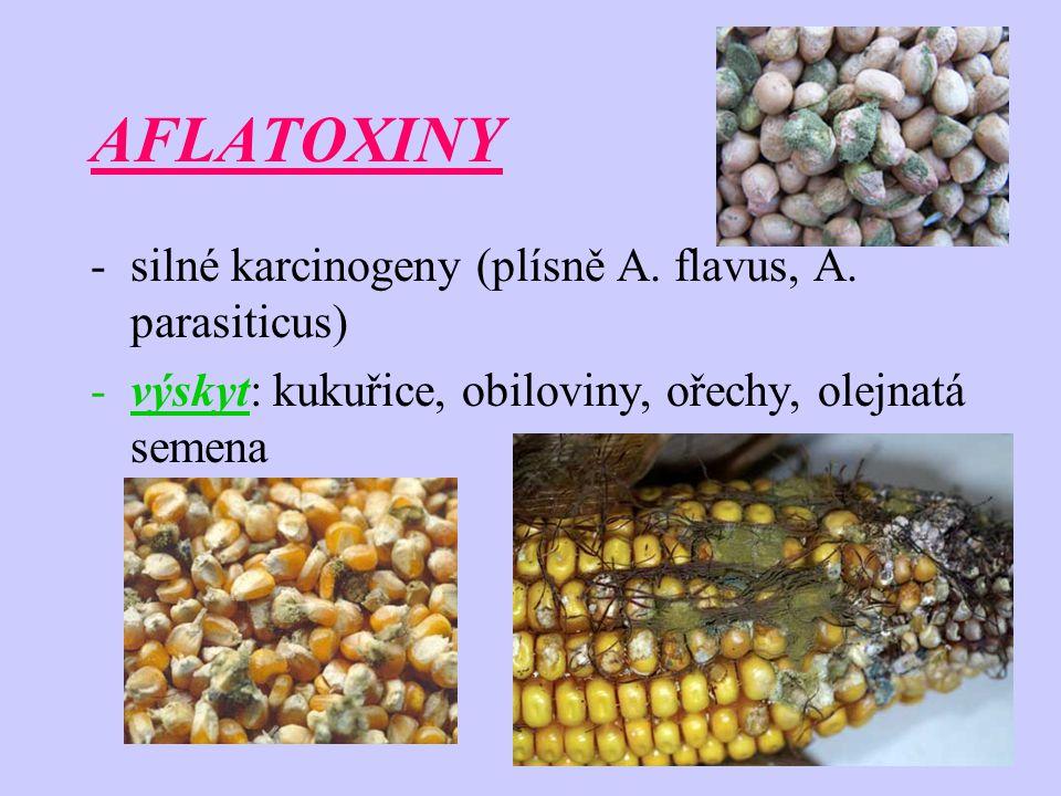 AFLATOXIN B1 - NEJZÁVAŽNĚJŠÍ -hepatokarcinogen – karcinomy jater, tlustého střeva, ledvin -výskyt: zvýšená vlhkost, teplota -TD 50 – 0,932 mikrogramů/kg/den (potkan) -Thajsko, Keňa -až 220 mikrogramů/kg/den -zvláště citlivé děti – Reyův syndrom
