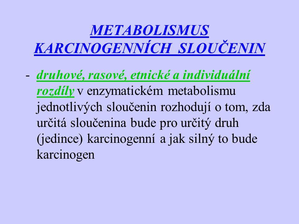 METABOLISMUS KARCINOGENNÍCH SLOUČENIN -u některých enzymů existuje genetická meziorgánová variabilita, etnická specifita následek např.