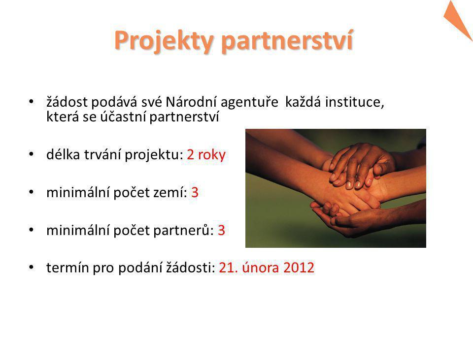 Činnosti partnerství  Místní činnosti ve vlastní organizaci  výukové činnosti, terénní práce, výzkum, spolupráce v konkrétních oblastech vzdělávání a přípravy atd.