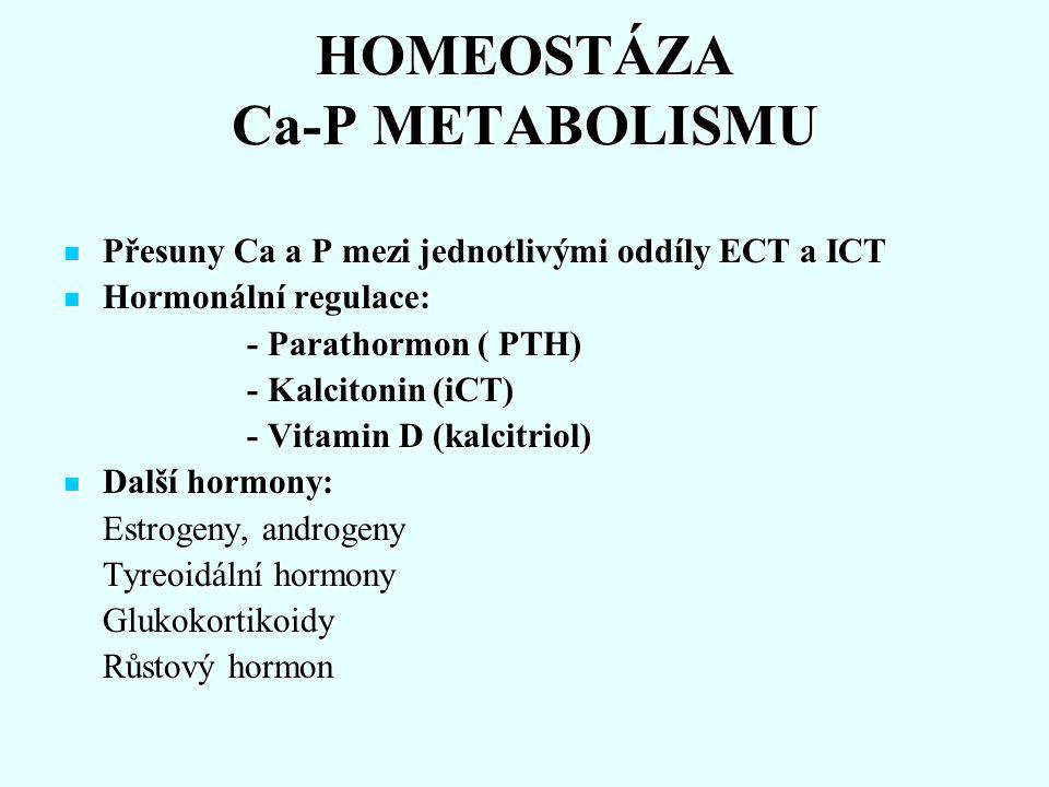 Sekrece PTH Sekrece: příštítná tělíska (hlavní bb.) Sekrece: příštítná tělíska (hlavní bb.) Řízení biosyntézy: Řízení biosyntézy: Ca 2+ vede k útlumu sekrece - intracelul.