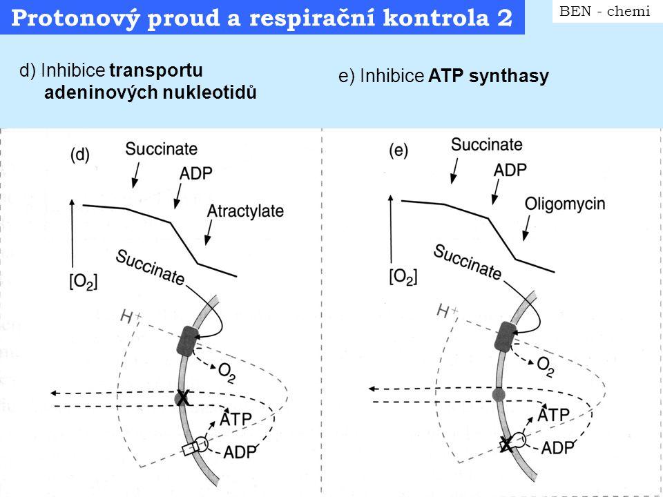 Respirační stavy MTCh BEN - chemi Konvence sledu respiračních stavů MTCH (typický experiment): stav 1: pouze MTCH ( v přítomnosti P i ) stav 2: přídavek substrátu (nízká respirace – málo ADP) stav 3:přídavek ADP (rychlá respirace) stav 4:konec přeměny ADP na ATP (zpomalení respirace) stav 5: anoxie (dnes se běžně používají pouze označení stav 3 a 4)