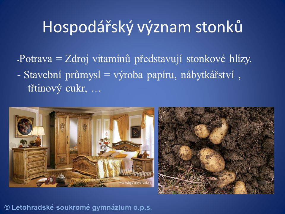 © Letohradské soukromé gymnázium o.p.s.Otázky Vyjmenuj alespoň čtyři typy stonků.