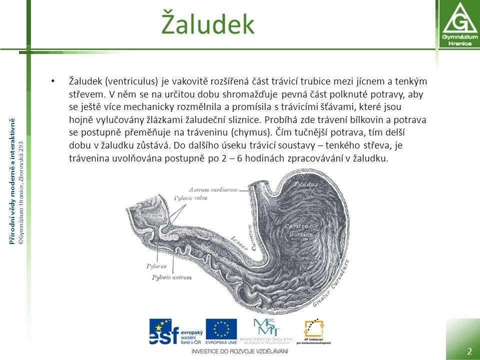 Přírodní vědy moderně a interaktivně ©Gymnázium Hranice, Zborovská 293 Stavba žaludku Žaludek je vystlán tmavě růžovou sliznicí.