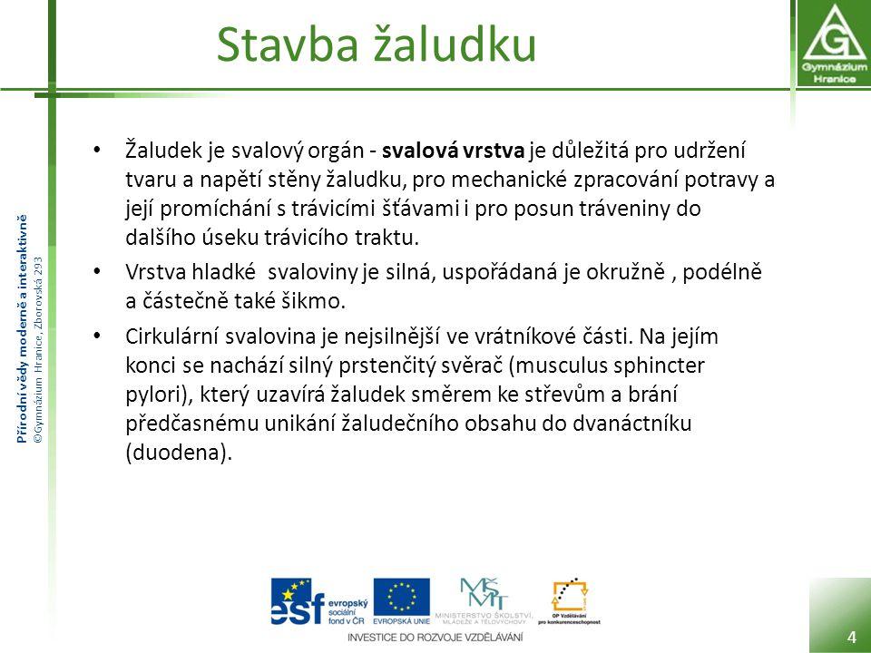 Přírodní vědy moderně a interaktivně ©Gymnázium Hranice, Zborovská 293 Chemické zpracování potravy Probíhá pomocí žaludeční šťávy.