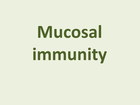Mucosal immunity. Epithelial barriers SkinMucosa.