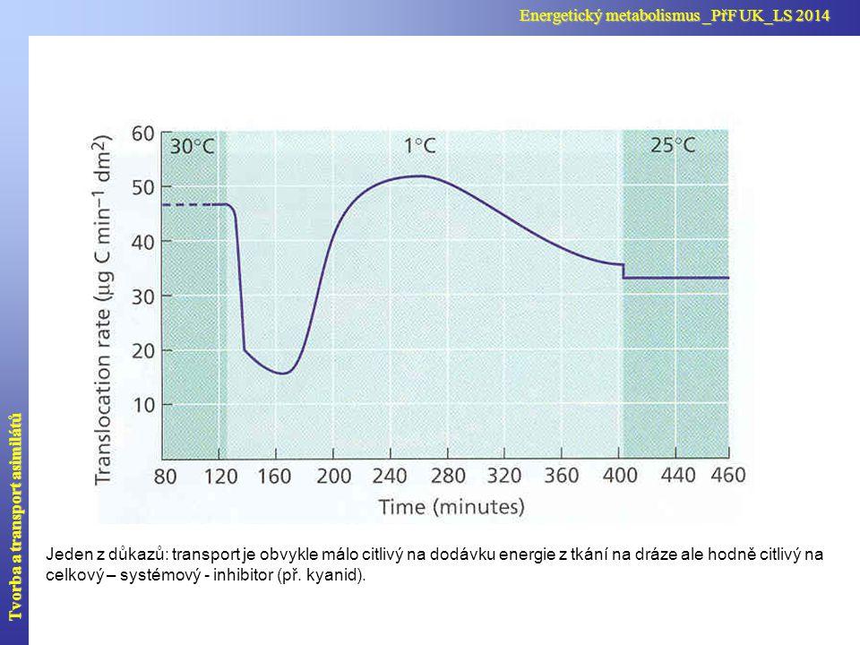 Poiseuillův zákon, rychlost toku v trubici, hydraulický odpor toku, tok asimilátů  = dynamická viskozita (pro vodu  =1·10 -3 Pa s= kg m -1 s -1 F hmotnostní tok asimilátů rychlost hromadného toku A plocha otvorů v sítku C koncentrace asimilátů [m 3 s -1 ] [m s -1 ] [m 3 s -1 Pa -1 ] [kg s -1 ] [kg m -3 ] Tvorba a transport asimilátů Energetický metabolismus _PřF UK_LS 2014